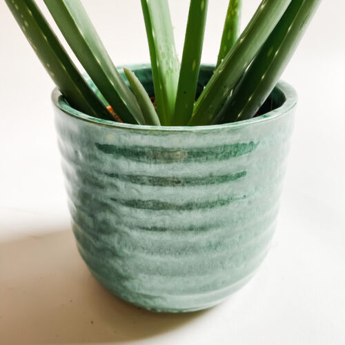 Recycled Glass Pot Green